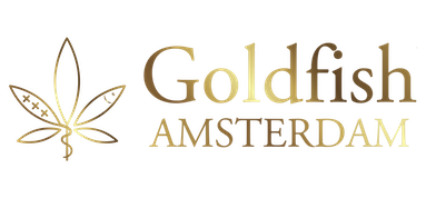 Goldfish Amsterdam