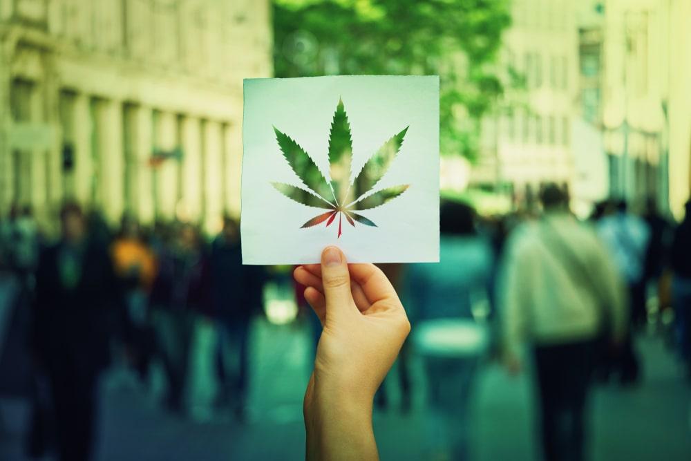 Cannabis allgemeine Anwendung